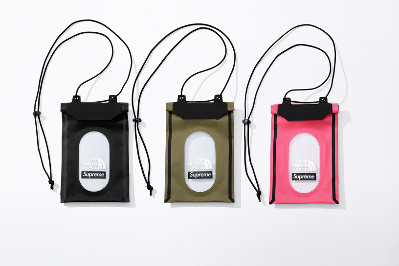 Supreme®/The North Face® Summit Series Outer Tape Seam Neck Pouch